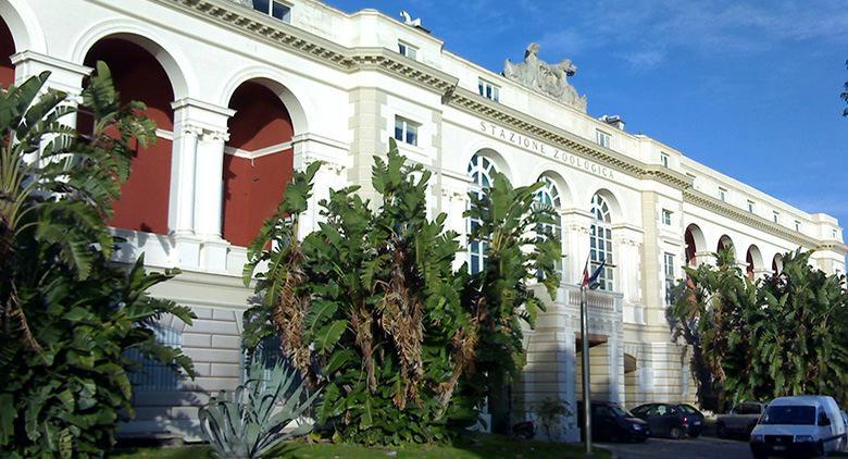 Stazione Zoologica Anton Dohrn a Napoli