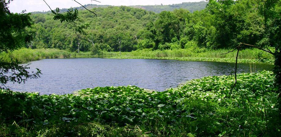 Lago Grande nella Riserva Naturale degli Astroni