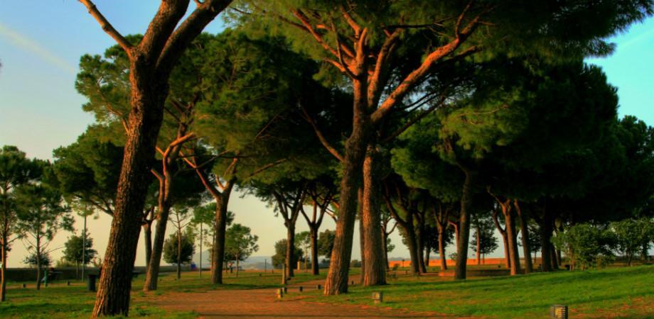 Virgilian Park