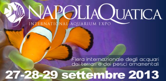 Napoli Aquatica 2013 Jambo