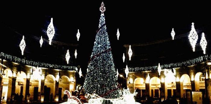 l'albero di natale in piazza a caserta