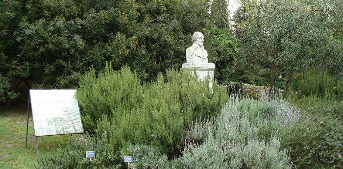 Interno dell'Orto Botanico di  Napoli con busto di Domenico Cirillo