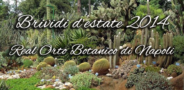 brividi d'estate 014 al real orto botanico di napoli