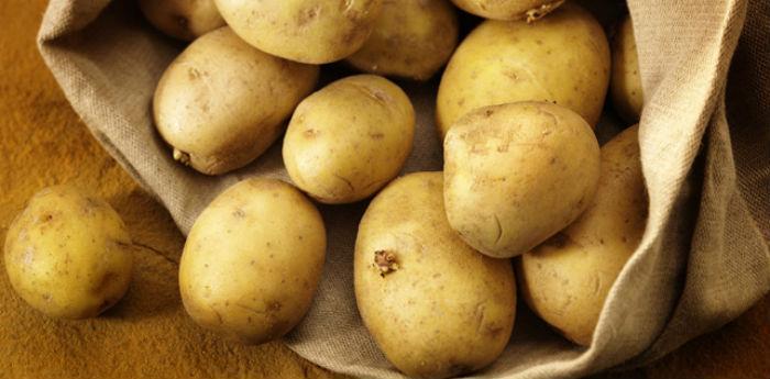 Patate agerolesi per la sagra della patata di Agerola 2014