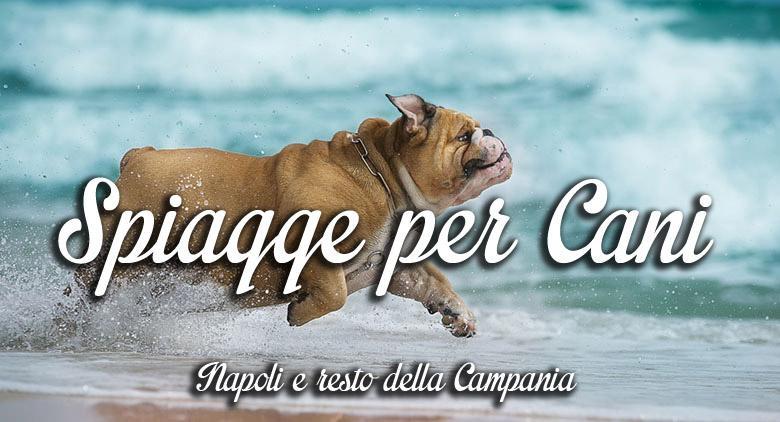 spiagge_per_cani_Campania