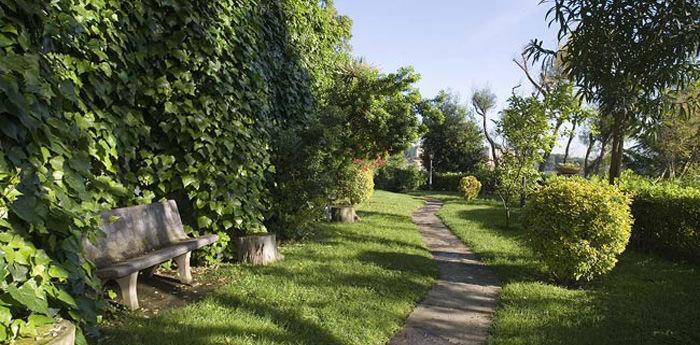 Sentiero nel Bosco dei Camaldoli di Napoli