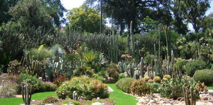 Tutti Invitati All Orto Botanico Per La Quot Festa Dell Albero