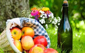 picnic_img