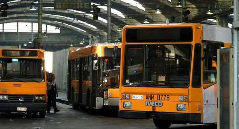bus-anm