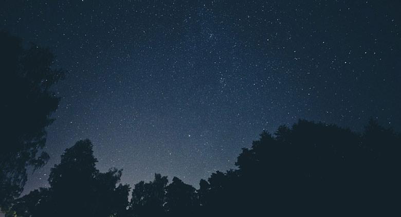 Stelle e volta celeste