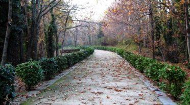 Park von Camaldoli