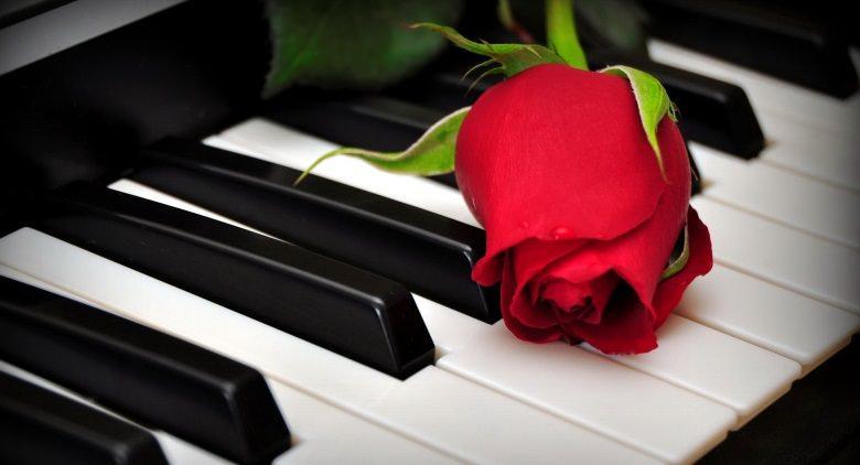 piano e rose