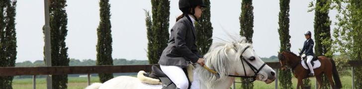 Giri sui cavalli