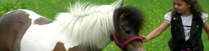 Giri in pony all'Ippodromo di Agnano