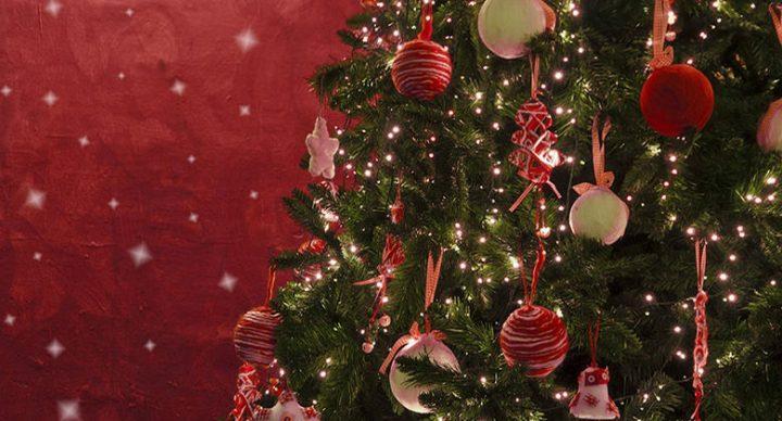 A Caposele l'accensione di uno degli alberi più alti d'Europa per il Natale 2015