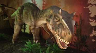 La mostra Days of the Dinosaur prorogata con prezzi speciali