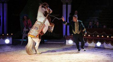 Circo Darix Togni ad Ercolano e Sant'Anastasia