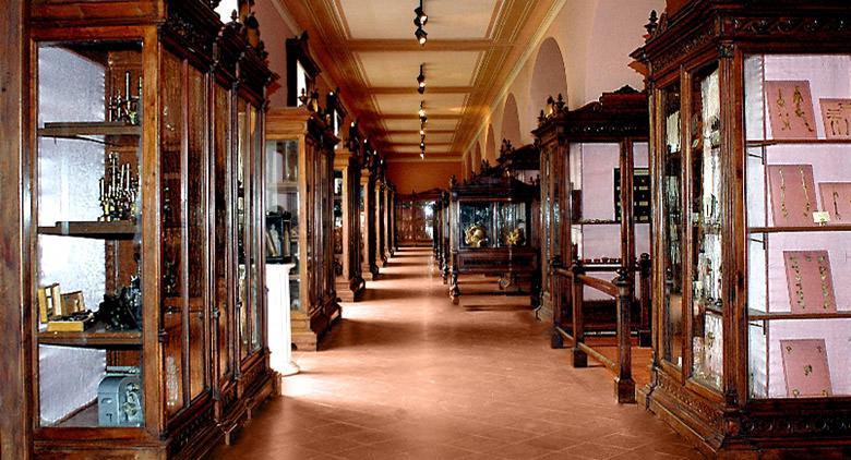 Il Museo di Anatomia a Napoli riapre