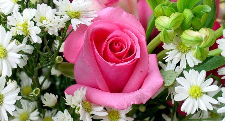 Festa dei fiori e dei colori a napoli