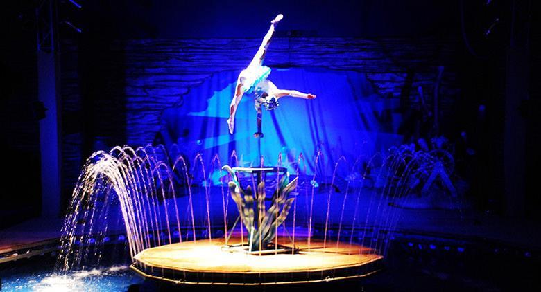 Cenerentola Circus Show