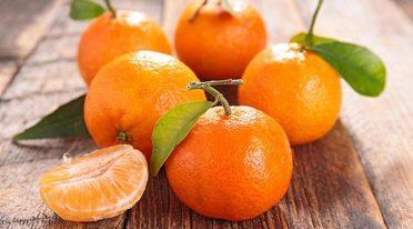 Festa del mandarino dei Campi dei Flegrei