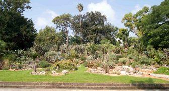 Un percorso per non vedenti all'Orto Botanico di Napoli