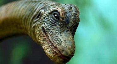 Alla Reggia di Portici l'evento A spasso con i Dinosauri