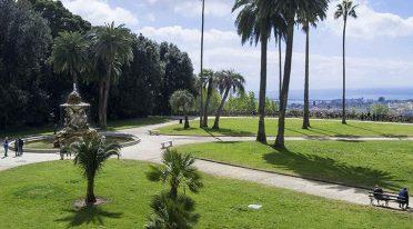 Al Bosco di Capodimonte a Napoli eventi e passeggiate con gli scout