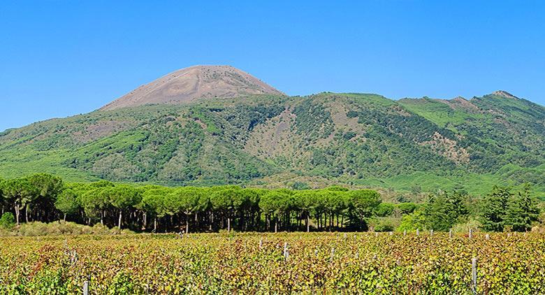 Escursione sul Vesuvio per la Pasquetta 2017