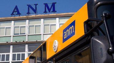 ANM Bus