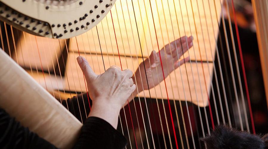 Concerti dell'Orchestra da Camera alla Reggia di Caserta