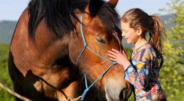 Pferdetag in der CELP Reitschule