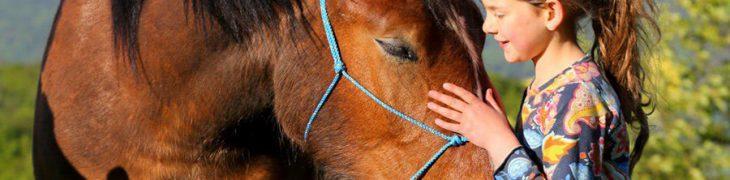 Giornata del cavallo al maneggio CELP