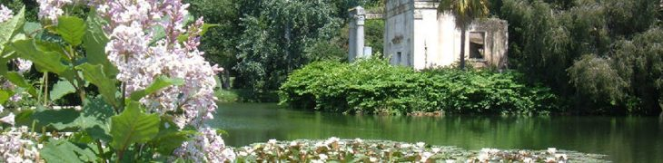 Park of the Royal Palace of Caserta, visit for the Day of the Trees