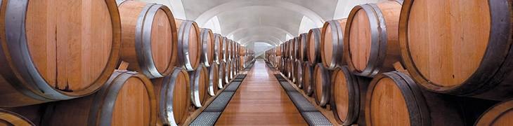 Cantine aperte a Feudi di San Gregorio con degustazioni di vini