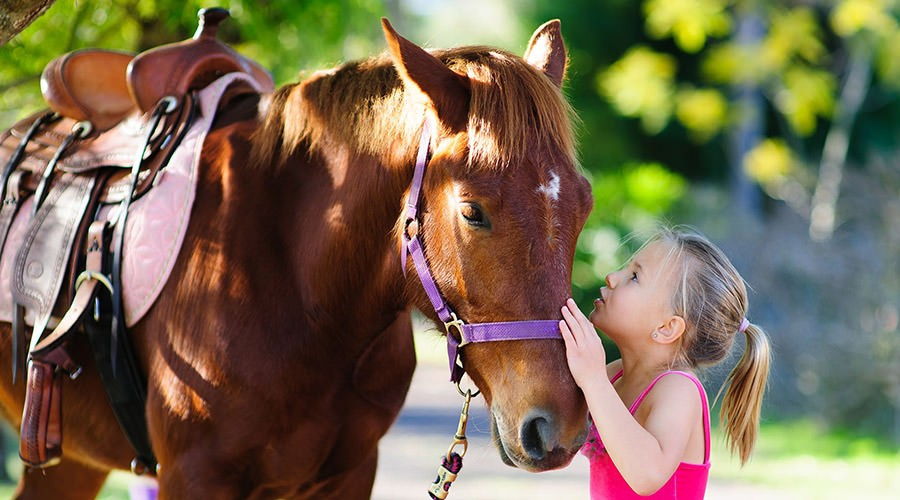 Bambina con cavallo