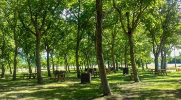 Parco del Volturno