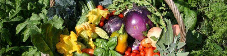 Produkte aus dem Gemüsegarten