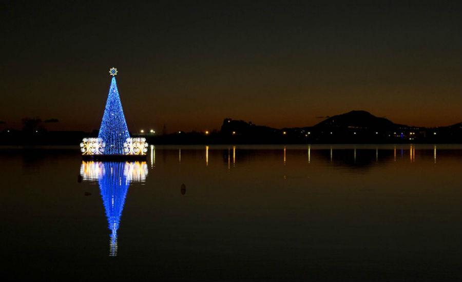 バコリに浮かぶクリスマスツリー