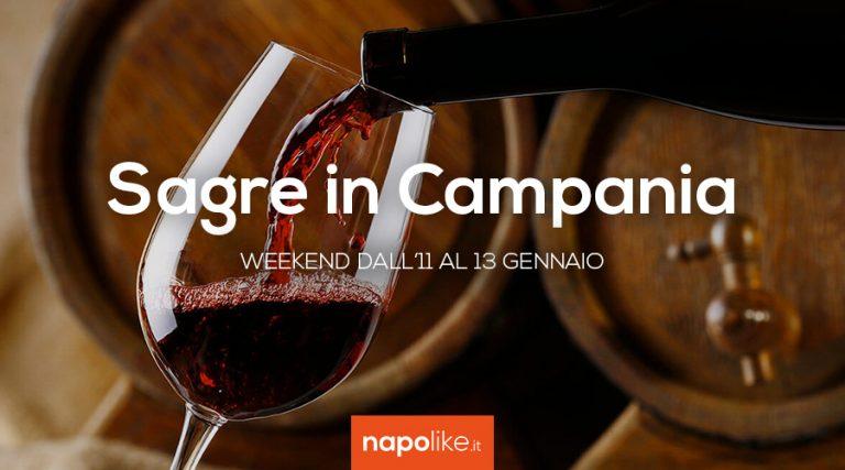 11から13への週末のCampaniaでのフェスティバル1月2019
