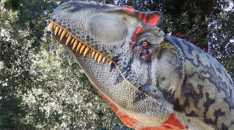 Mostra Dinosauri in carne e ossa 2019