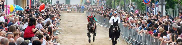 Palio del Casale in Camposano: running on donkeys and street food