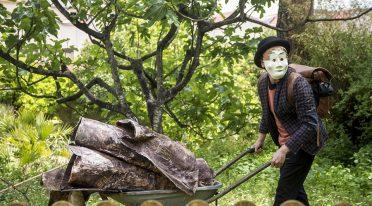 حكايات خريفية الخريف في حديقة نابولي النباتية
