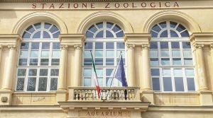 Stazione zoologica - Acquario di Napoli