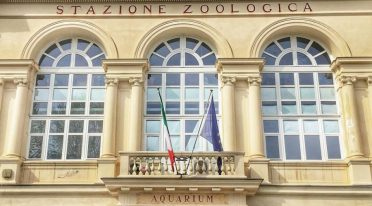Station zoologique - Aquarium de Naples