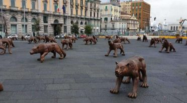 Installation of wolves in Piazza Municipio in Naples