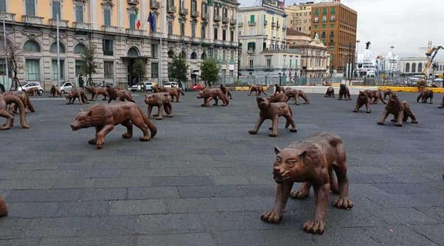 Installazione di lupi in Piazza Municipio a Napoli