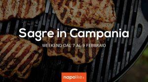 7から9への週末のCampaniaでのお祭り2月2020