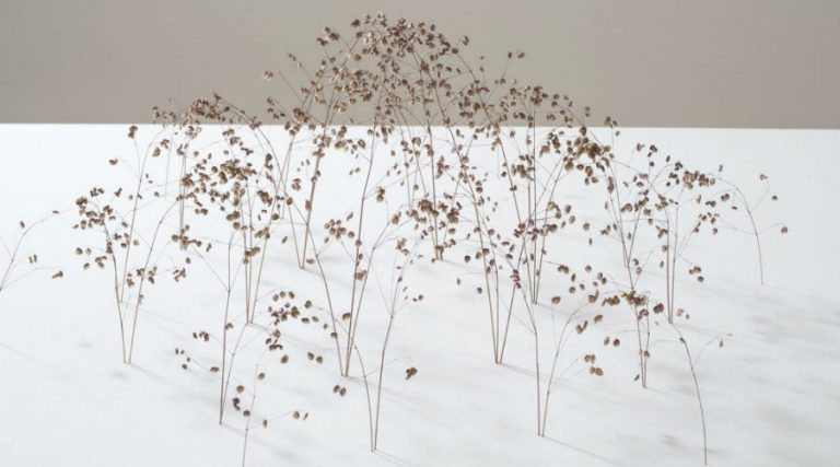 Mostra Christiane Lohr