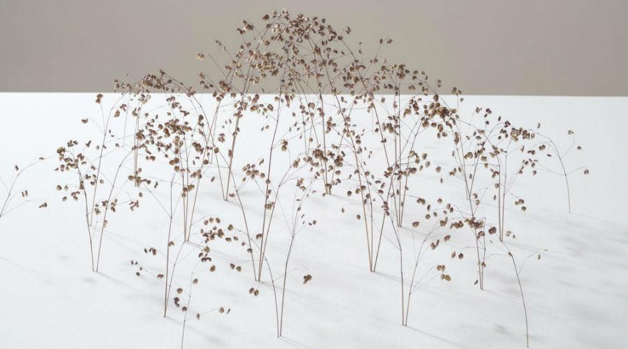 Exposition Christiane Lohr
